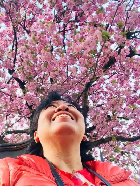 Sakura UK pic